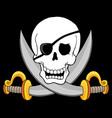 pirate skull theme 3 vector image