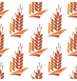 Seamless pattern of wheat rye and barley vector image vector image