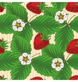 Seamless Pattern with Srawberry vector image vector image