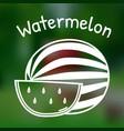 thin line watermelon icon vector image
