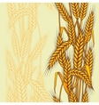 wheat field seamless pattern vector image vector image