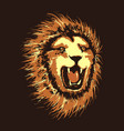 head of angry lion vector image