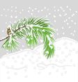 Branch of Christmas tree with snow Pine branch vector image vector image