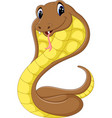 cute cobra snake cartoon vector image