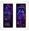 Fireworks Banner Vertical vector image vector image