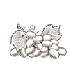 Grapes in vintage style Line art vector image vector image