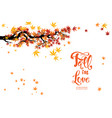 isolated autumn branch vector image vector image