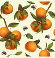 mandarin fruit pattern vector image