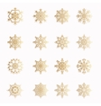 Various golden winter snowflakes set vector image