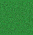 abstract green grass seamless texture vector image