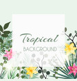 abstract natural tropical frame background vector image