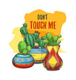 banner with cactus in pots or sticker with cacti vector image