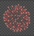 beautiful red firework bright salute isolated vector image