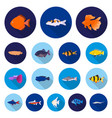 different types of fish flat icons in set vector image vector image