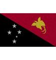 Flags Papua New Guinea on denim texture vector image