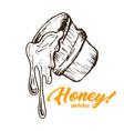 honey sketches bucket with honey drop flow hand vector image
