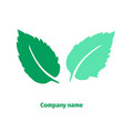 mint logo for company isolated mint leaves on vector image vector image