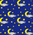 night sky pattern vector image vector image