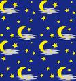 Night Sky Pattern vector image