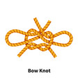 bow sea knot bright colorful how-to guide on vector image vector image