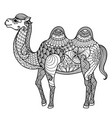 camel zentangle vector image vector image