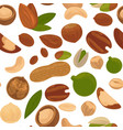 delicious nutritious nuts full of vitamins and vector image vector image