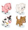 farm animal cub isometric 3d cute bacartoon vector image