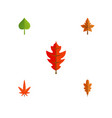 flat icon maple set of hickory linden alder and vector image vector image