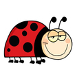 Happy Ladybug Smiling vector image vector image