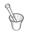 mortar and pestle vector image vector image