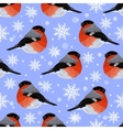Seamless pattern with snowflakes and bullfinches vector image vector image