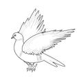 A monochrome sketch of a bird vector image vector image
