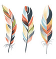 bright big feathers on a white background boho vector image vector image