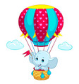 elephant baby on hot air balloon cartoon vector image vector image