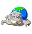 elephant wearing helmet racer vector image