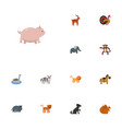 flat icons hippopotamus chimpanzee kine and vector image vector image