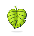 green tree leaf eco or bio symbol vector image