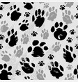 traces of animals of different sizes vector image vector image