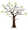 tree smile eco vector image