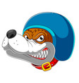 angry dog wearing helmet racer vector image