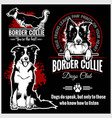 border collie - set for t-shirt logo vector image vector image
