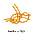 bowline on bight sea knot bright colorful how-to vector image vector image