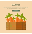 Carrot Web Banner in Flat Style Design vector image