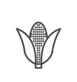 corn icon outline agriculture line corn s vector image