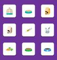 flat icon animal set of rabbit meal feeding fish vector image vector image