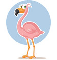 pink flamingo bird cartoon vector image