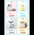 Animal banner with Cats for web design 1 vector image vector image