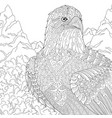 eagle adult coloring page vector image