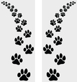 footstep of cat vector image vector image