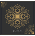 Henna mandala decorative ornament design vector image vector image